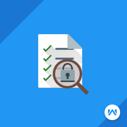 Ecommerce Security Audit Basic Plan