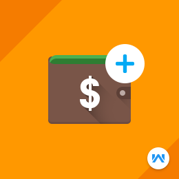 Odoo Website Wallet: Add Money