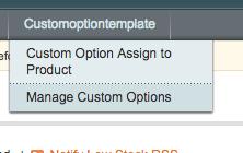 magento custom option template admin menu